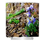 Beauty Elevated Shower Curtain
