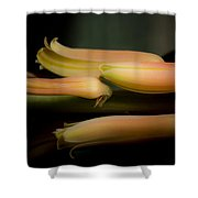 Beauty Hope And Strength Shower Curtain