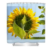 Beauty However You Look At It Shower Curtain
