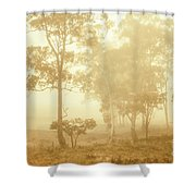 Beauty In A Forest Fog Shower Curtain