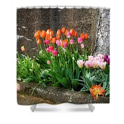 Beauty In Ruins Shower Curtain