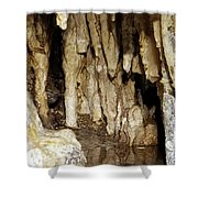Beauty In The Cave Shower Curtain