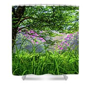 Beauty In The Fog Shower Curtain