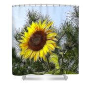 Beauty In The Pines Shower Curtain