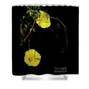 Beauty In The Shade Shower Curtain