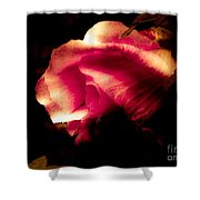 Beauty In The Shadows Shower Curtain