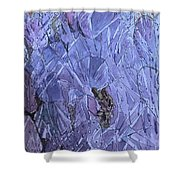 Beauty In The Thorns Shower Curtain