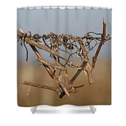 Beauty Is Everywhere Shower Curtain