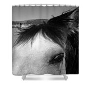 Beauty Is In The Eye... Shower Curtain