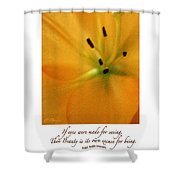 Beauty Is Its Own Excuse Poster Shower Curtain