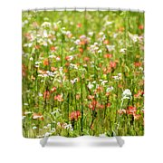 Beauty Is Spring Shower Curtain