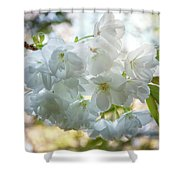 Beauty Is Transcendent Shower Curtain
