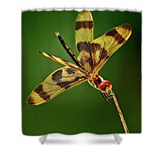 Beauty Marks Shower Curtain