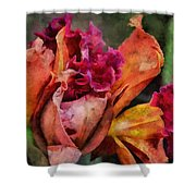 Beauty Of An Orchid Shower Curtain