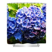 Beauty Of Blue. Shower Curtain