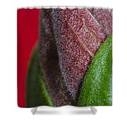 Beauty Of Life Shower Curtain