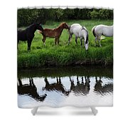 Beauty Of Place Shower Curtain
