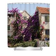 Beauty Of Split Shower Curtain