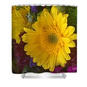 Beauty Of Spring Shower Curtain