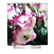 Beauty Of The Day Shower Curtain