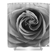 Beauty Of The Rose Ill Shower Curtain