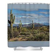 Beauty Of The Sonoran  Shower Curtain