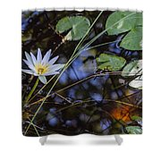 Beauty Of The Swamp Shower Curtain