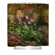Beauty On An Old Stone Wall Shower Curtain
