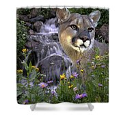 Beauty On The Mountain Shower Curtain