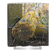 Beauty On The Ranch Shower Curtain