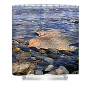 Beauty On The Shore Shower Curtain