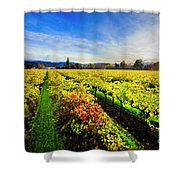 Beauty Over The Vineyard Shower Curtain