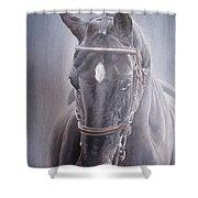 Beauty Spot Shower Curtain