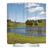 Beauty Swan Lake  Shower Curtain