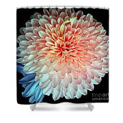 Beauty The Round Shower Curtain