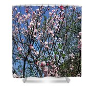 Beautiful Spring. Blooming Tree 2 Shower Curtain