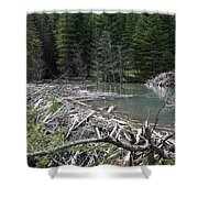 Beaver Dam And Lodge Shower Curtain