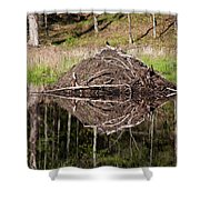 Beaver Lodge Reflection Shower Curtain