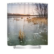 Beaver Place Shower Curtain