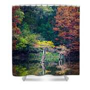 Beavers Bend Trees Shower Curtain