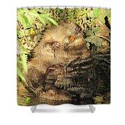 Beavers Shower Curtain