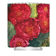 Beavertail Cactus Shower Curtain