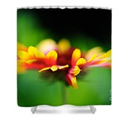 Beckoning  Shower Curtain