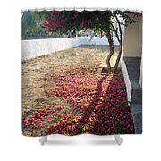 Bed Of Bougainvillea Shower Curtain