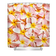 Bed Of Light Shower Curtain