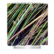 Bedazzled Blades 4 Shower Curtain