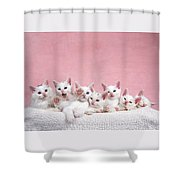 Bedtime Kittens I'm Not Tired Mom Shower Curtain