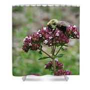 Bee 1 Shower Curtain