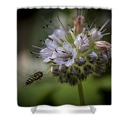 Bee 4 Shower Curtain