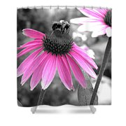 Bee And Cone Flower Shower Curtain